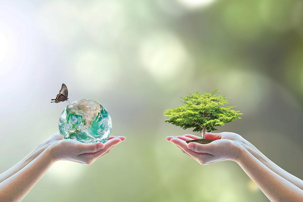 企業の環境責任