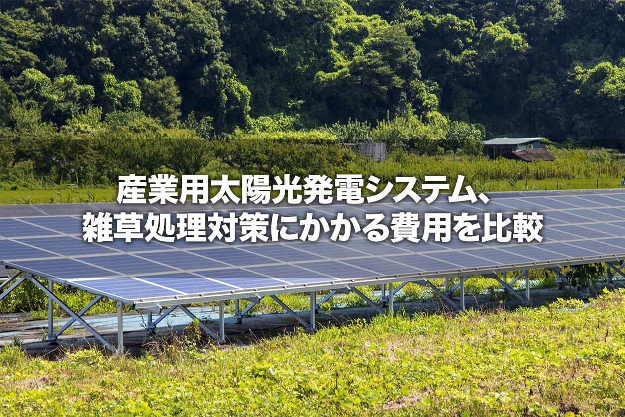 産業用太陽光発電システム、雑草処理対策にかかる費用を比較