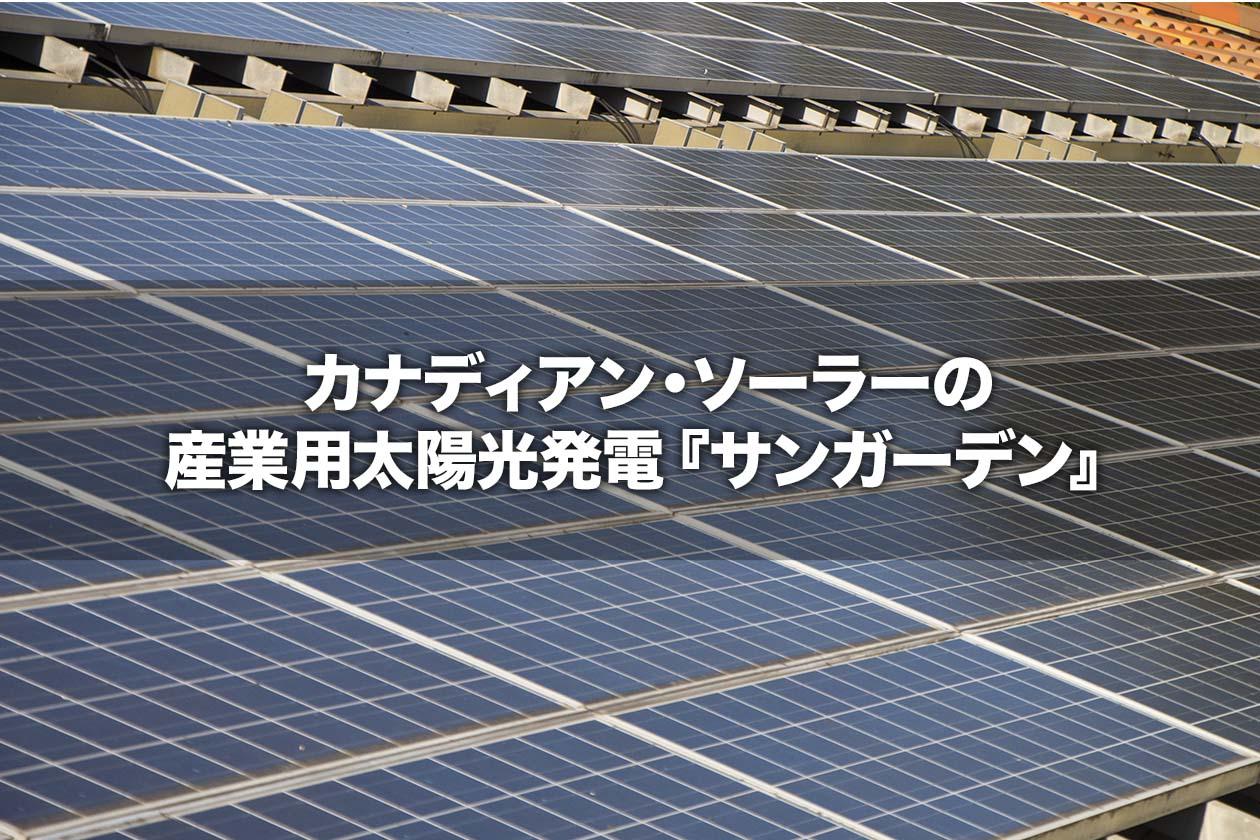 カナディアン・ソーラーの産業用太陽光発電『サンガーデン』